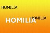 HOMILIA-1-300x200